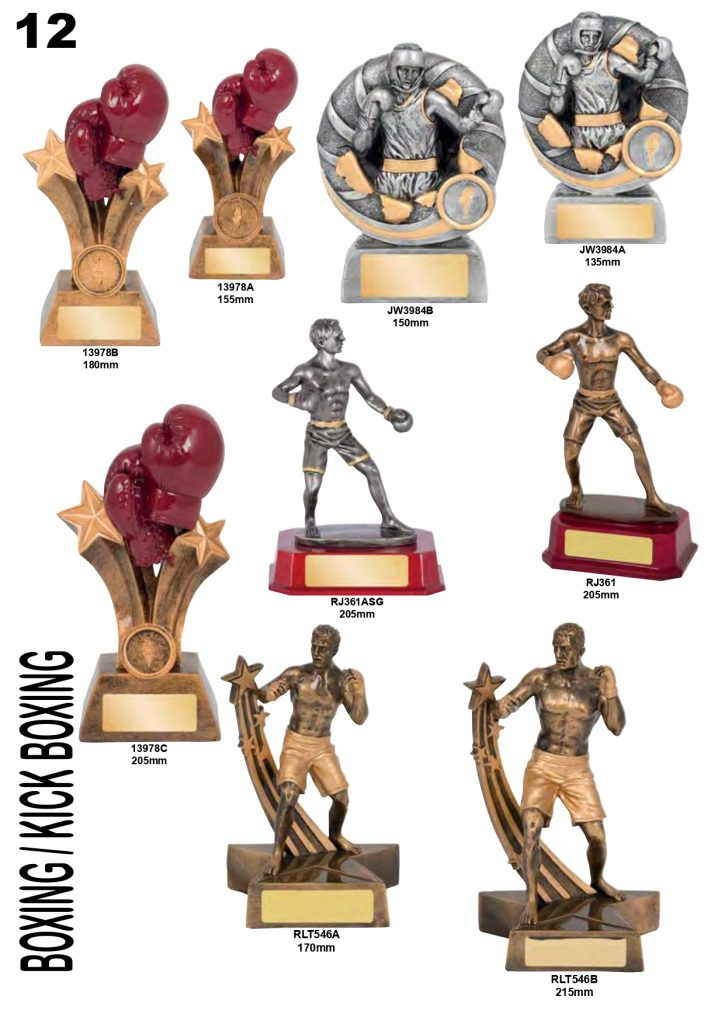 TROPHIES & AWARDS 2020 (1)_page-0012